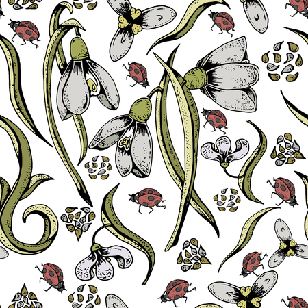 Colorful seamless snowdrops pattern with seeds, ladybirds and white bachground