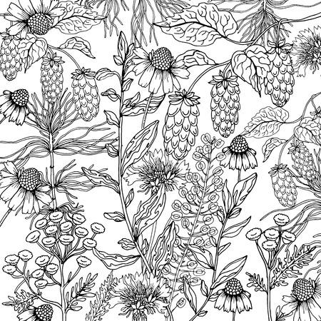 Doodle floral camomile background in vector with doodles black and white coloring page. Vector ethnic pattern can be used for wallpaper, pattern fills, coloring books and pages for kids and adults.