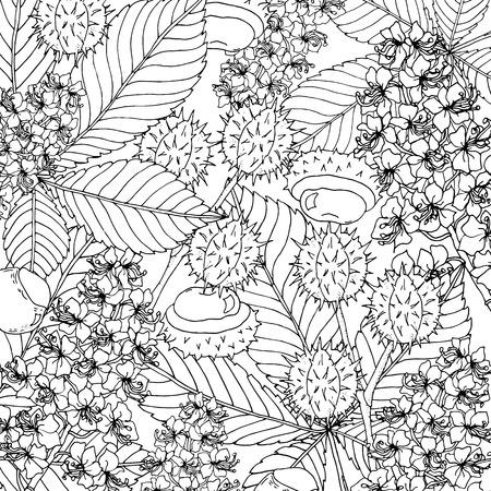 Doodle floral Kastanien Hintergrund im Vektor mit Kritzeleien Schwarz-Weiß-Malvorlagen. Ethnische Vektormuster können für Tapeten, Musterfüllungen, Malbücher und Seiten für Kinder und Erwachsene verwendet werden. Vektorgrafik