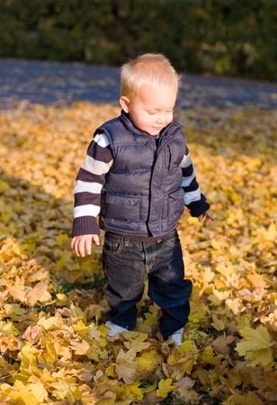 Portrait of a cute young boy outdoors in nature at fall. photo