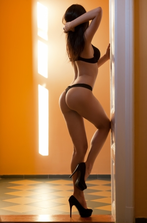 Lingerie shot of young brunette woman with perfect slender body.