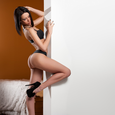 sexy pose: Portrait of a sexy young brunette woman wearing lingerie. Stock Photo