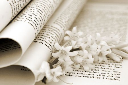 hight: Closeup of a book with flowers in it. Narrow Depth of field Stock Photo