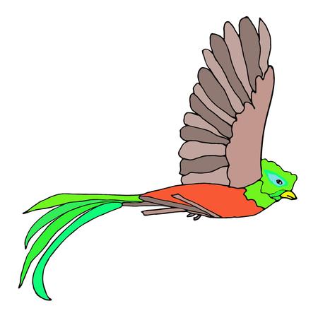 Quetzal Bird flying. Resplendent Quetzal. Vector illustration.
