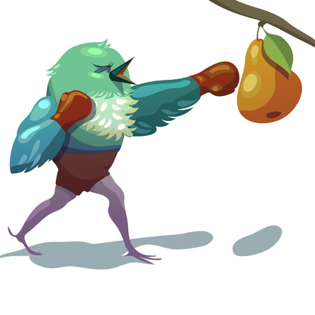 pugilism: Vector illustration of sparrow. Boxing. Training illustration for your design Illustration