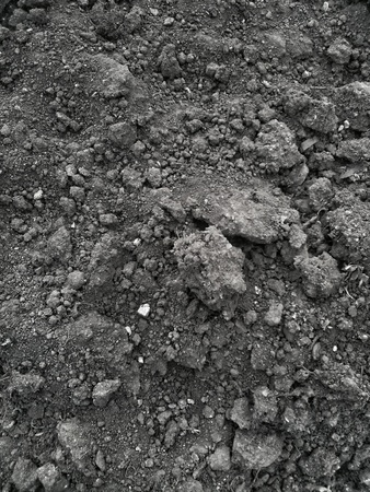 pila: Soil dark grunge texture. Abstract