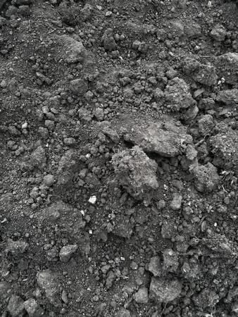 pila: Soil dark grunge texture. Abstract