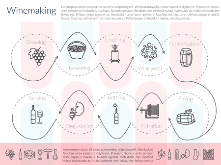Flat illustration of main wine making process and tools. Production of alcoholic beverages. Illustration