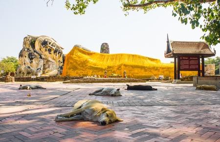 The reclining Buddha, Ayutthaya, Thailand