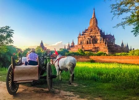 Bullock cart and pagoda, Myanmar Reklamní fotografie