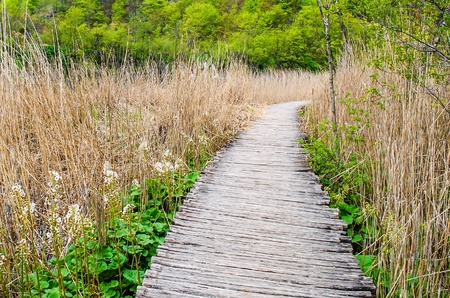 trave: Wooden walkway at Plitvice lakes, national park, Croatia