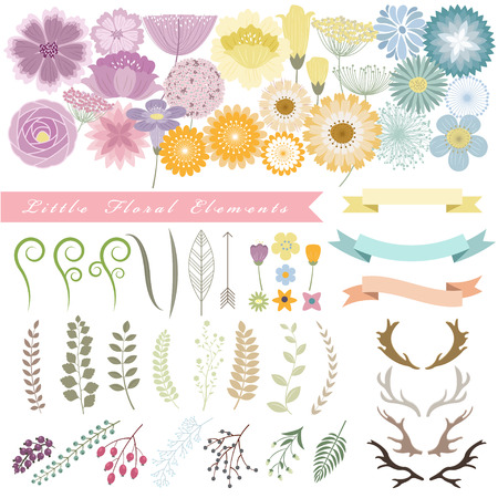 flower designs: set of floral element vector illustration