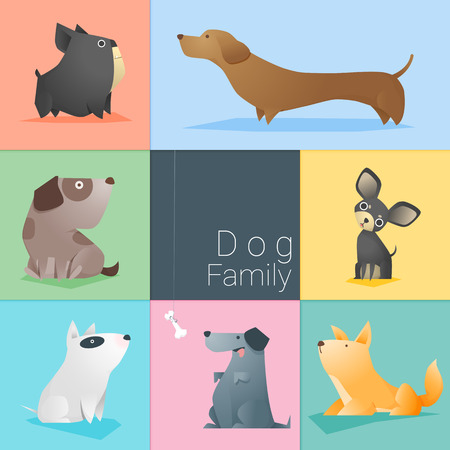 chihuahua pup: Set of dog family , vector , illustration