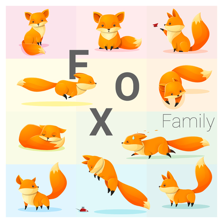 Set of Fox family , vector , illustration