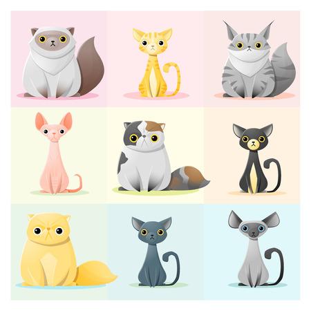 bombay: Set of cat family , vector , illustration