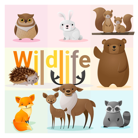 Set of Wild animals , vector , illustration Vettoriali
