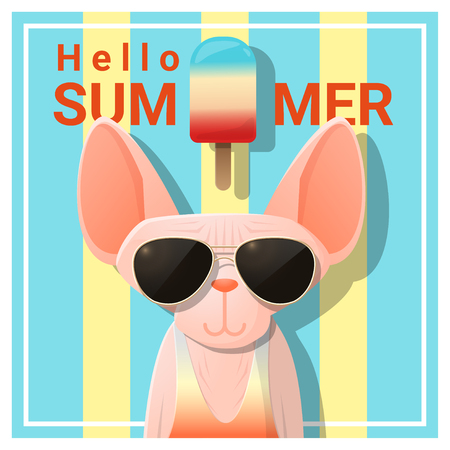 beach party: Hello summer with cat wearing sunglasses , vector , illustration