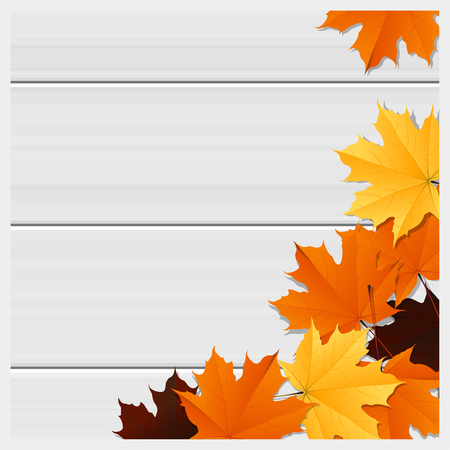 Hello autumn background with colorful leaves on wooden board , vector , illustration