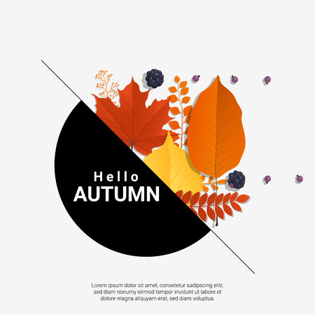 Hello autumn with modern colorful leaves and fruits background , vector , illustration Illustration