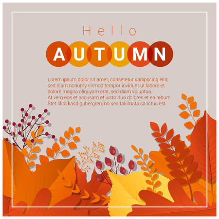 Hello autumn with colorful leaves and fruits background , vector , illustration