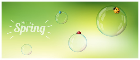 Hello Spring background with colorful ladybugs on soap bubbles , vector , illustration