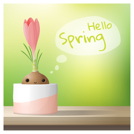 Hello Spring background with Spring flower Crocus growing in a pot on wooden table top , vector , illustration
