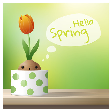Hello Spring background with Spring flower Tulip growing in a pot on wooden table top , vector , illustration