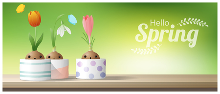 Hello Spring background with Spring flower Crocus, Tulip, Snowdrop on wooden table top , vector , illustration Vettoriali