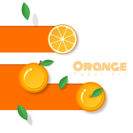 Fresh orange fruit background in paper art style , vector , illustration
