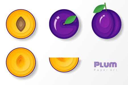 Set of plums in paper art style , vector , illustration
