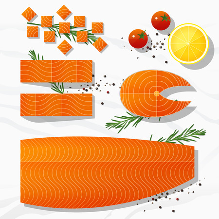 Set of fresh raw salmon fish and spices isolated on marble stone background. Vector illustration