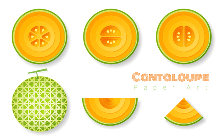 Set of cantaloupe melons in paper art style. Vector illustration Illustration