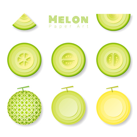 Set of melons in paper art style. Vector illustration Illustration