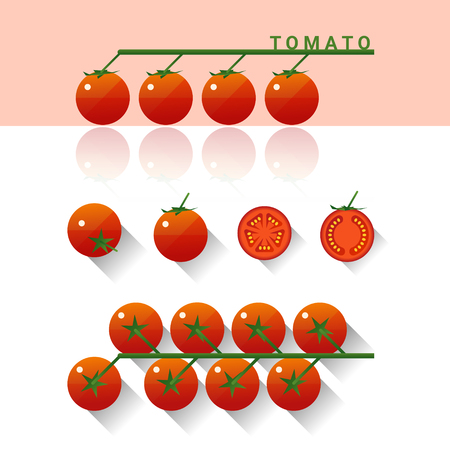 Set of fresh tomatoes isolated on white background , vector , illustration
