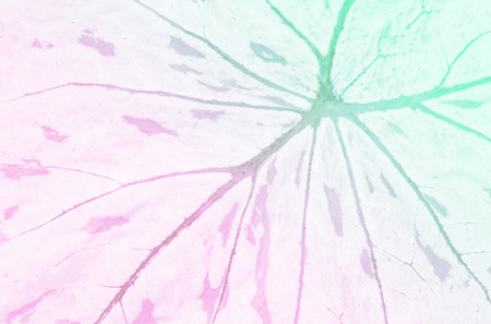 pastel background of leaf pattern