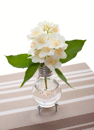 Handmade Light Bulb Vase With Jasmine Flowers On Decorative Napkin