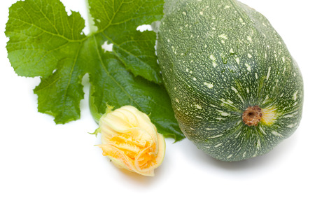 marrow squash: Vegetable marrow squash zucchini with flower and green leaves isolated on a white Stock Photo