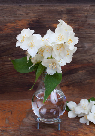 Handmade Light Bulb Vase With Jasmine Flowers On The Background