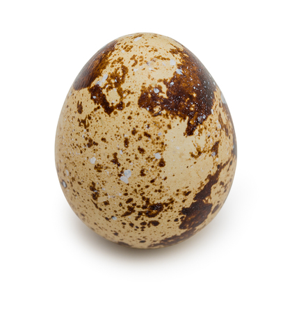 Raw quail egg with spotted surface isolated on a white background. Close up. Stock Photo