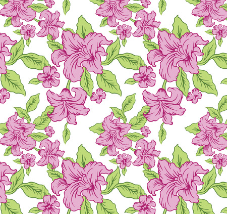 line drawings: Beautiful line drawings The beauty of the pink flowers vector.