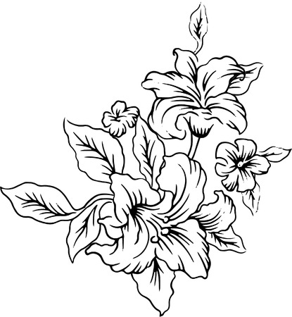 line drawings: Line drawings of a bouquet of beautiful flowers.