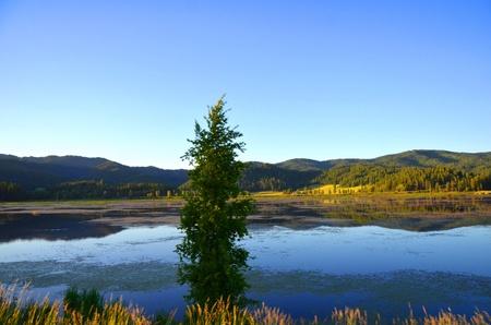veiw: lake and mountain veiw