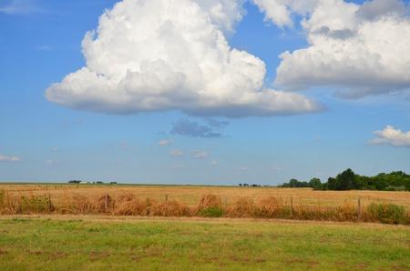 cloud in field