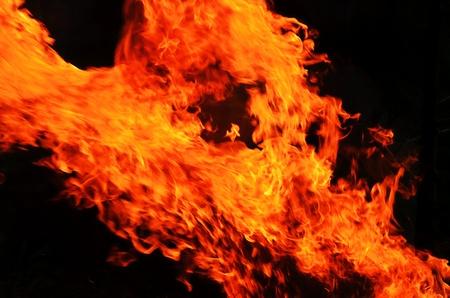 Roaring Fire 版權商用圖片