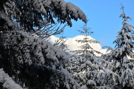snowy mountain range photo