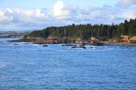 Ocean coast Фото со стока