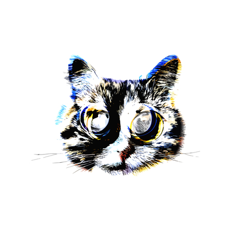 colorful abstract cat portrait