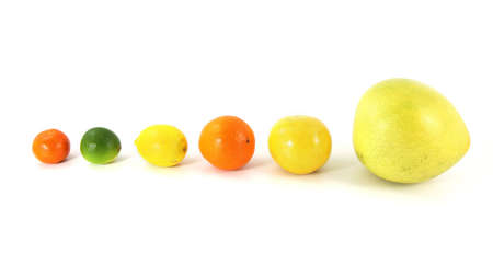 Various ripe citrus fruit isolated on white background in line Stock Photo