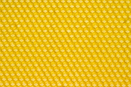 Yellow honeycomb prepared for bees to start building combs