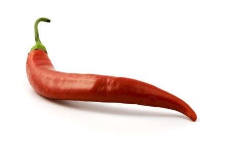 Red Hot Chili sur fond blanc Banque d'images